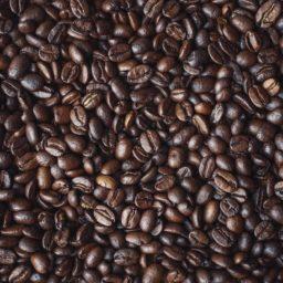 Kedvenc kávézóink